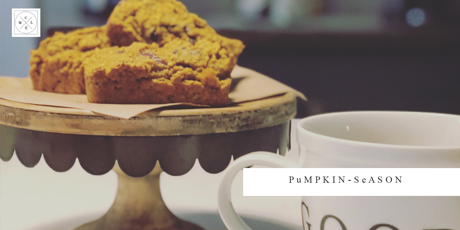 Falling for Pumpkin Chocolate Chip Muffins Recipe